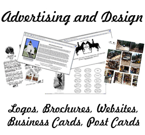 Advertising and Design - Logos, Websites, Brochures, Business Cards, Post Cards, etc.